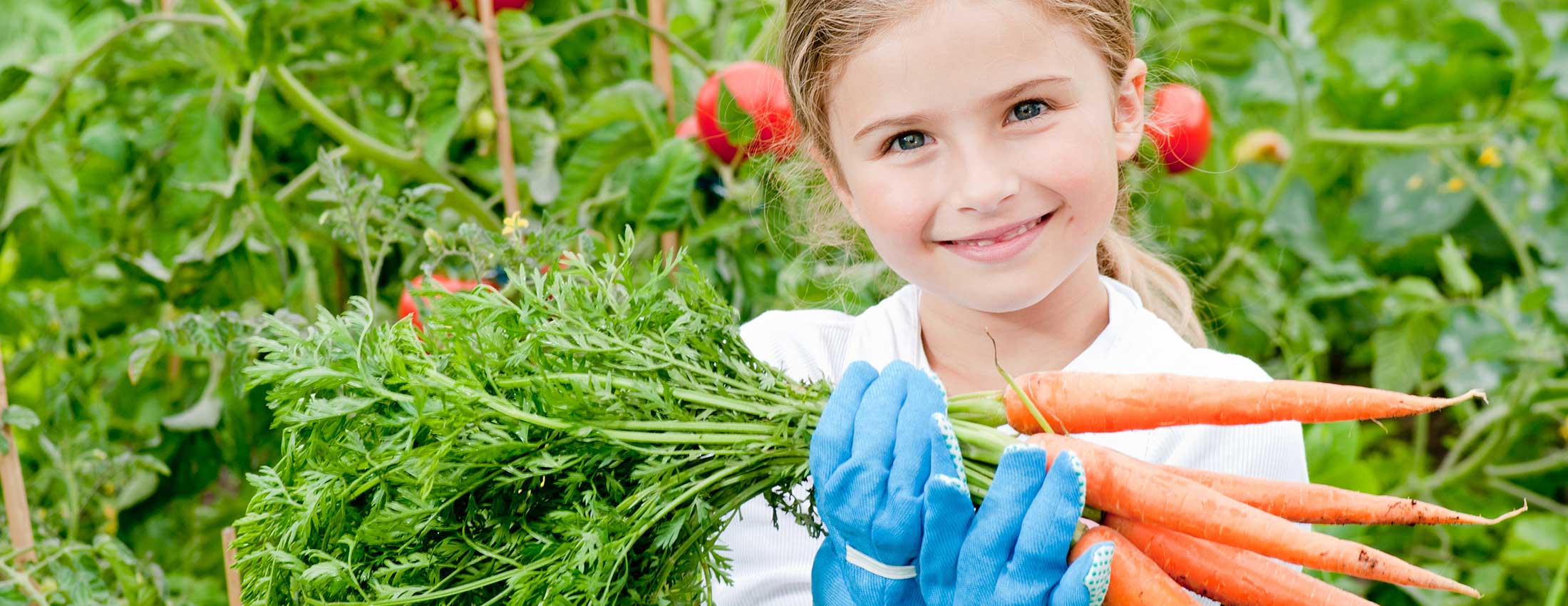 Nutrition Gardening® – Reclaiming Responsibility for Your Own Health – Part 2